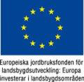 EU_flagga_landsbygdsutv2